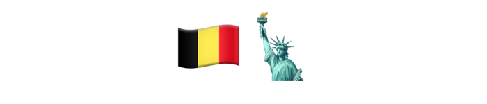 Belgian company and New York office